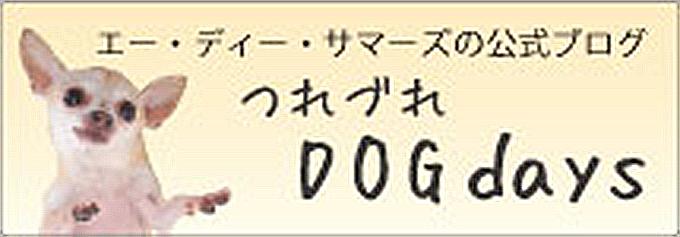 エーディーサマーズのブログ